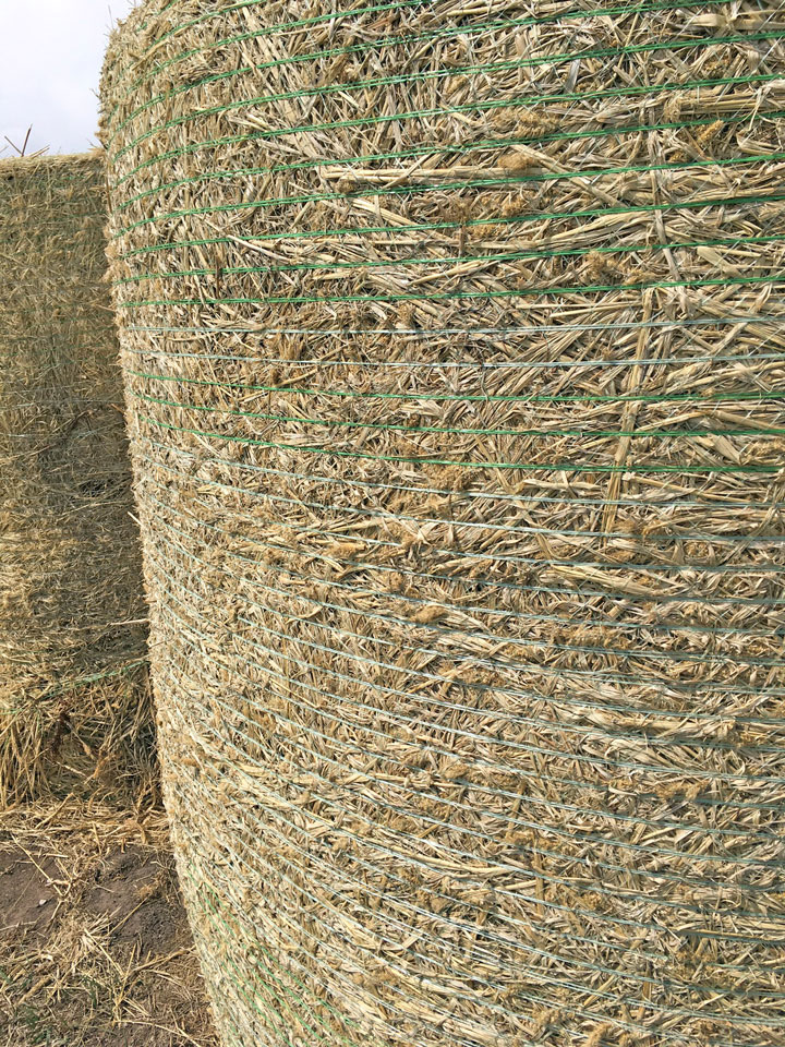 Forage 2017: It's a wrap–Bale wrap innovations work to solve
