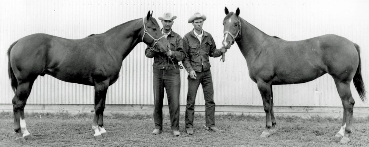 Ray and his father, Raymond, are pictured with AQHA Champion Sokota Babe and SDQHA High Point Mare, Jerri Punk, in 1966.